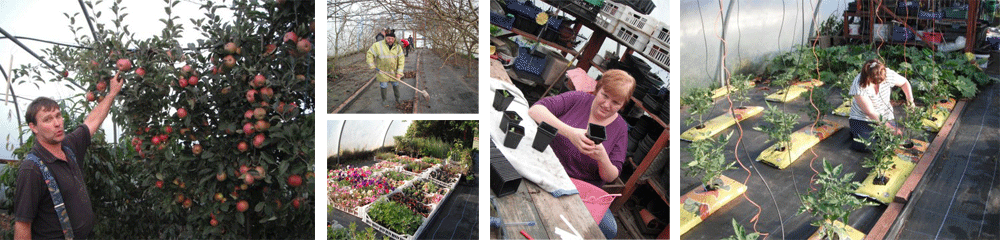 enjoy horticulture at Moorvue